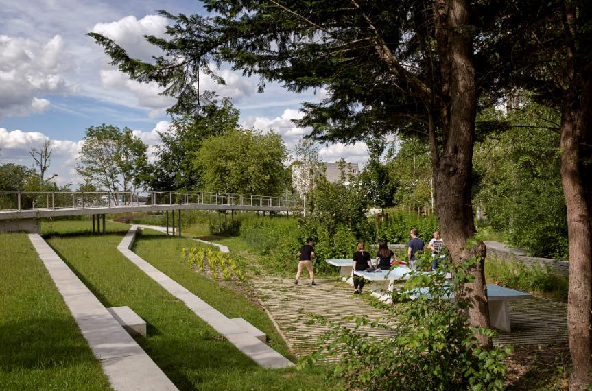 Jardin argenté